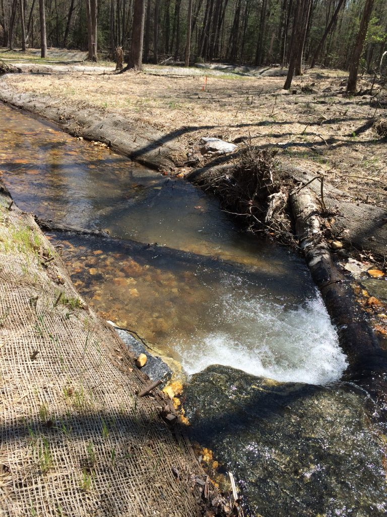 Good Neighbor Creek Mitigation Bank - Dawsonville, GA